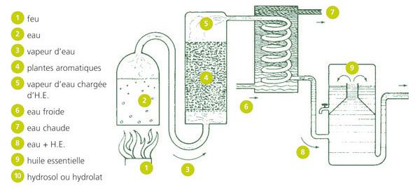 procédé de distillation des huile essentielles