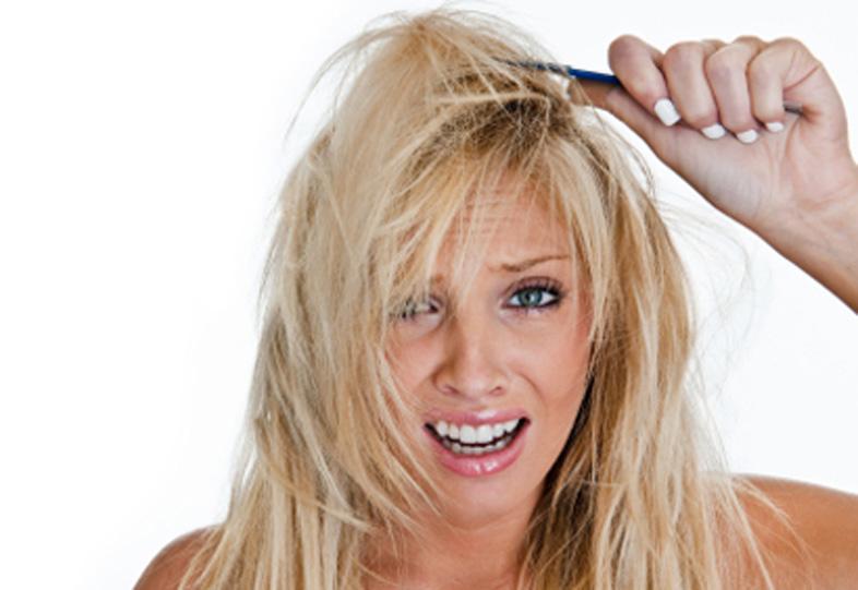 conseils de soins capillaires bio pour cheveux secs et cassants