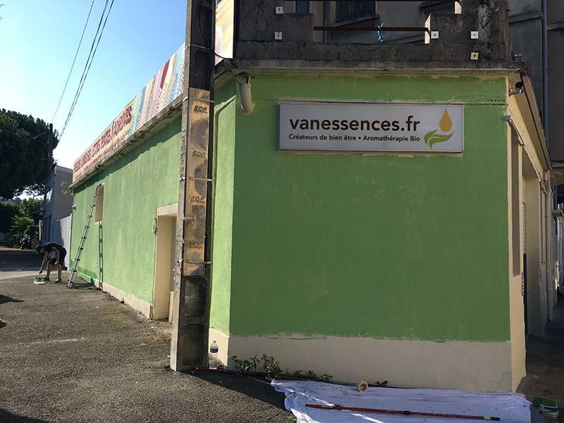 fond vert fresque vanessencesFR